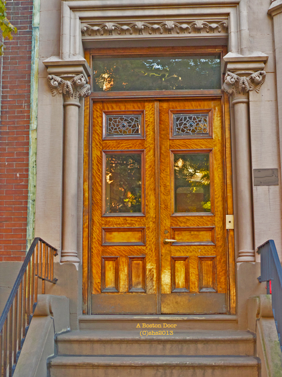 A golden Boston Door photographed by susan sheldon nolen