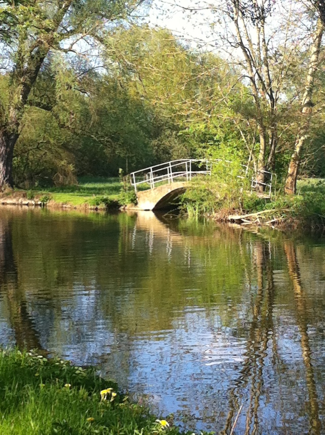 Photograph of the Bridge in Oxford University Park by Susan sheldon nolen