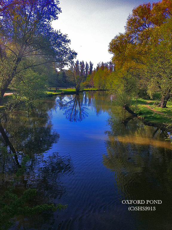 Photograph of the Oxford Pond by susan sheldon nolen