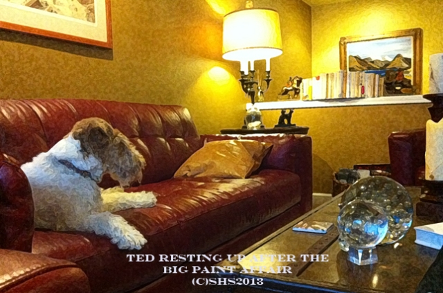 Susan Sheldon Nolen's Wire Fox Terrier Ted resting on a couch