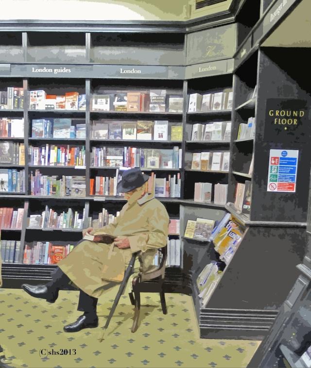 chair book shop by susan sheldon nolen