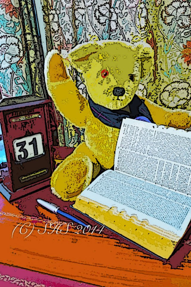 My Teddy Bear struggling to find the meaning of Arctophile in the smaller version of the Oxford English Dictionary