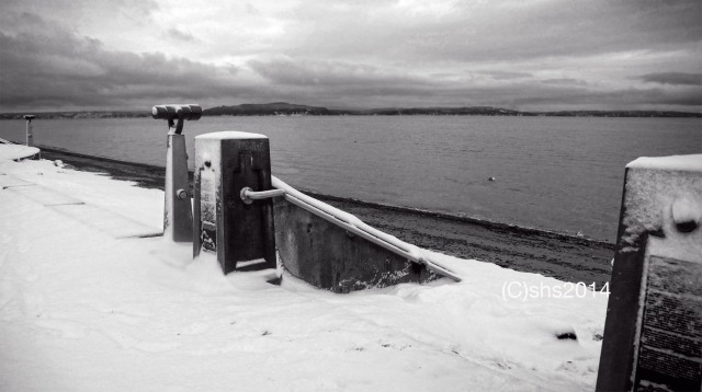 Susan Nolen's Photograph of Alki Beach in the snow