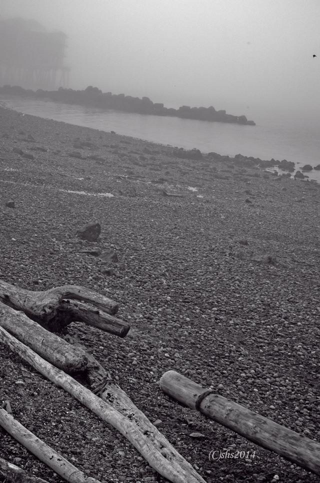 fogbeachshs