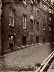 London, the Slow Walk Home photographed by Susan Sheldon Nolen