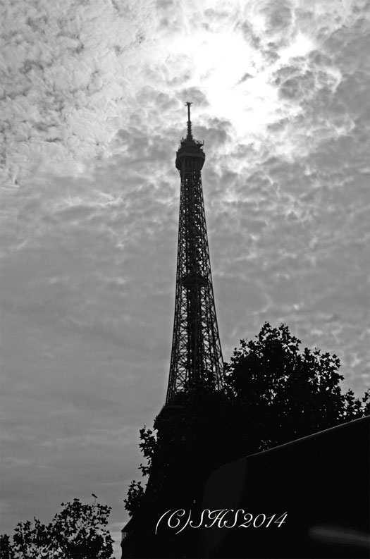 Paris as seen from the bus by susan sheldon nolen