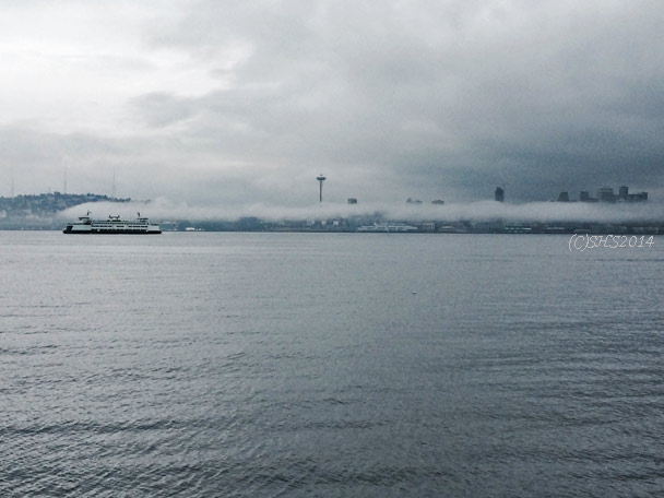 Susan Nolen's Seattle Ferry Photograph