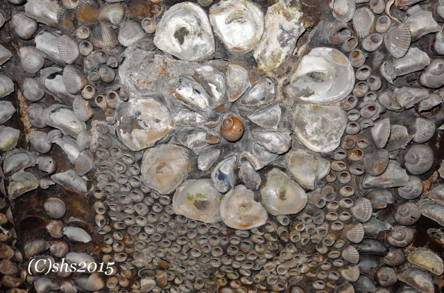 A detail of one of the many flower shells decorating the Grotto.
