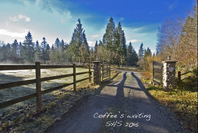Susan Sheldon's Photograph of A Pacific Northwest Equestrian Property