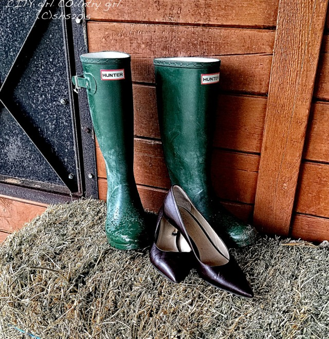 Susan Nolen's Hunter Boots and Hobb's High heels