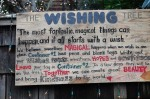 Susan Nolen's Photograph of the wishing tree in Seattle