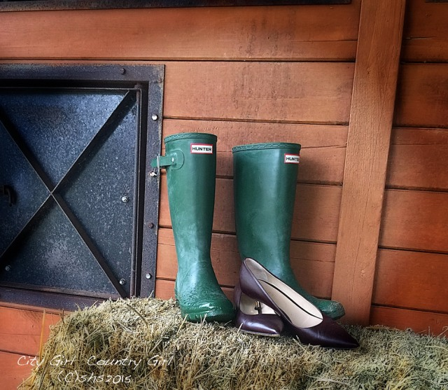 Susan Nolen's photograph of Hunter Boots
