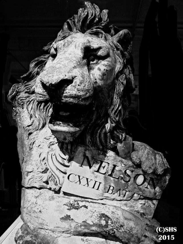Susan Nolen's Portrait of Nelson's Lion