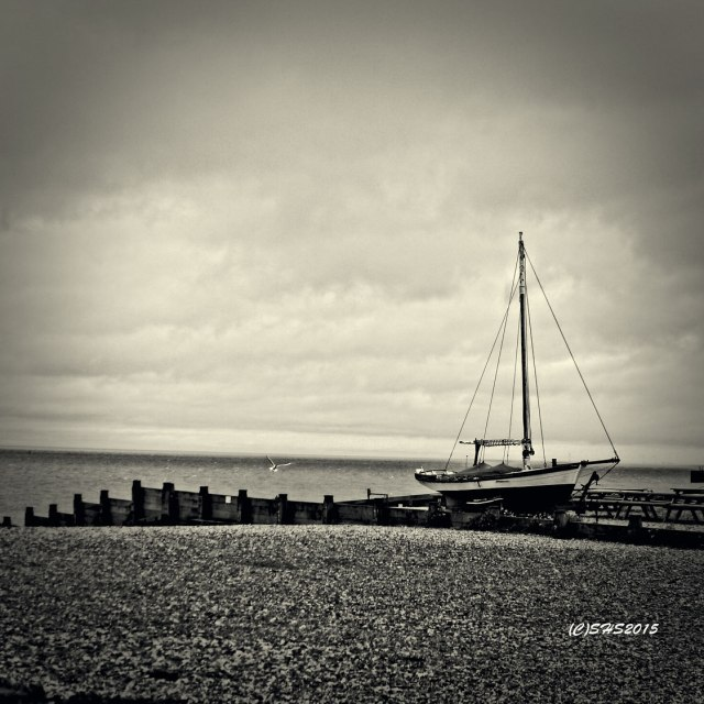 Susan Sheldon Nolen's Photo of a sail boat in whitstable net
