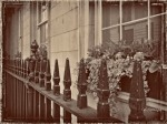 Susan Nolen's Photograph of Iron Railing in London England