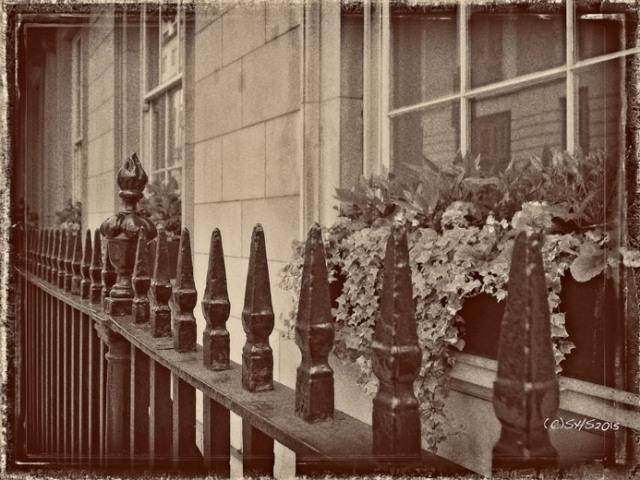 Susan Nolen's Photograph of Iron Railing in London England