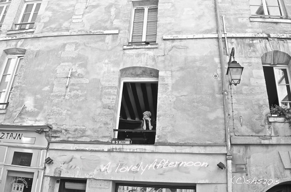 Susan Nolen's Photograph of the Marais Paris
